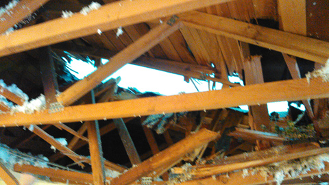 structural roof damage from fallen tree