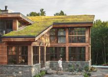 Green Roof Marin County