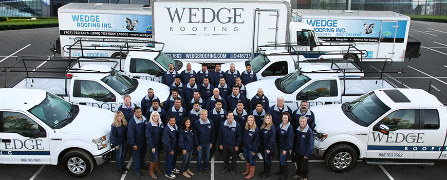 wedge roofing company